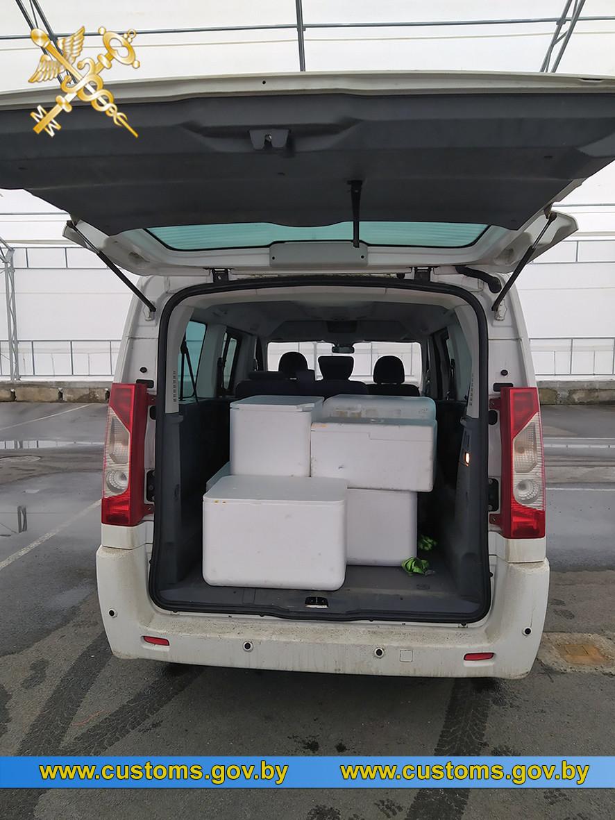 Около 55 кг икры рыб осетровых пород намеревался незаконно переместить через границу