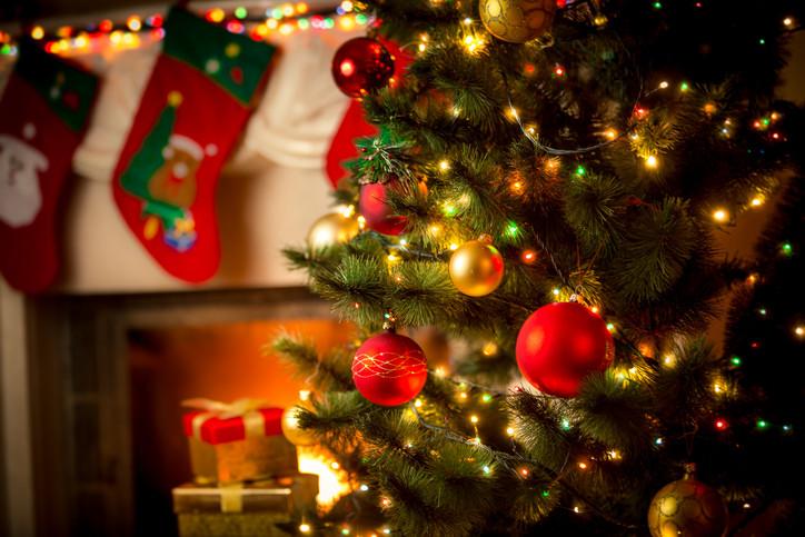«Чтобы выйти замуж, надо Новый год встретить в красных трусах». Бобруйчане — о новогодних семейных традициях