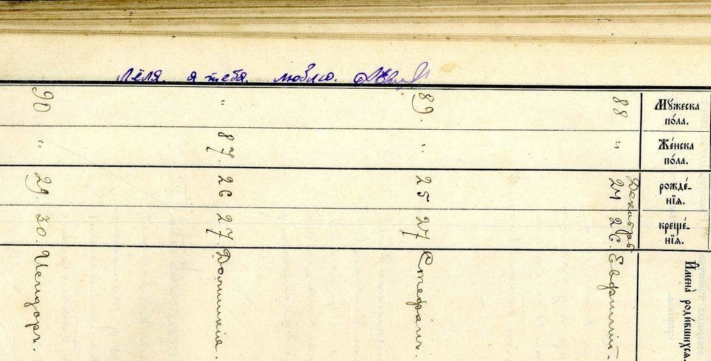 Интересные надписи нашли специалисты Национального исторического архива на документах Могилевского и Бобруйского уездов