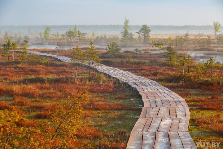 Куда съездить в выходные? 10 необычных экскурсий по Беларуси для любопытных туристов