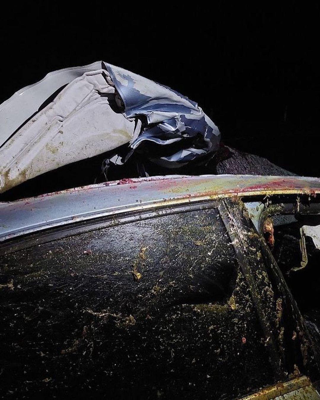 В Осиповичском районе в ДТП с диким животным погиб человек