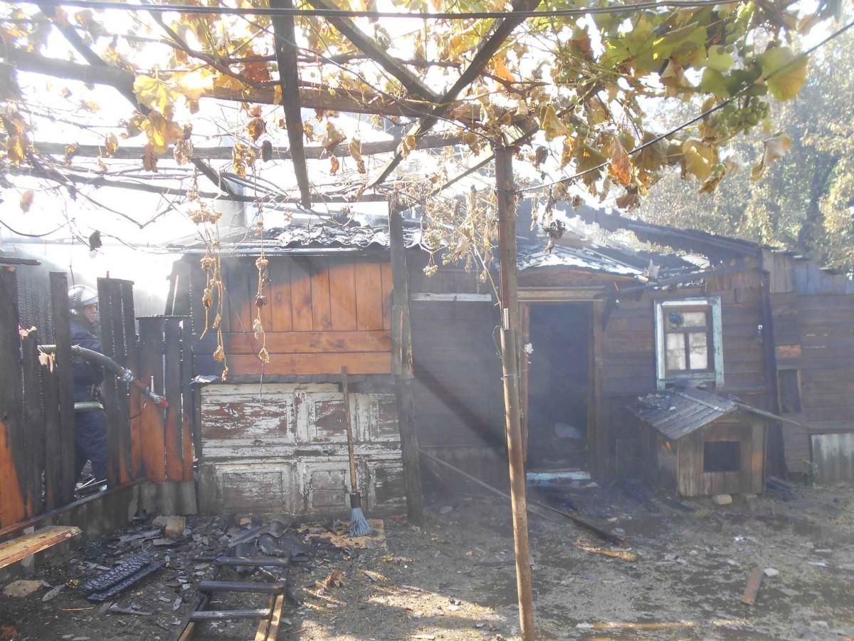 Непотушенный костер стал причиной пожара в Бобруйске