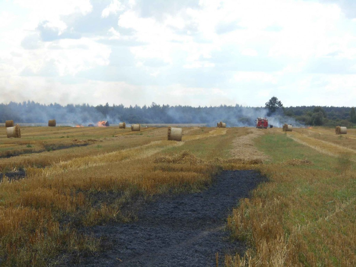 В Бобруйском районе во время уборки загорелся трактор