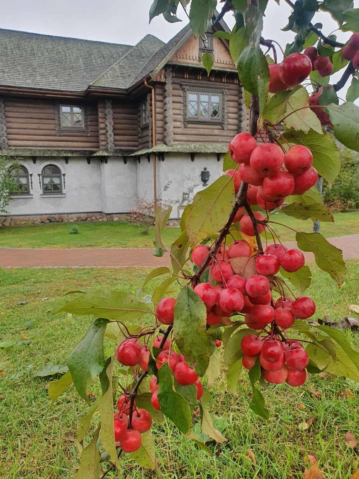 Не работой единой: коллектив «Красного пищевика» отправился в тур по нарочанскому краю