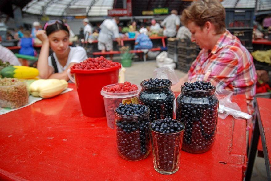 «Черничный» бизнес. Уборщица из Бобруйска рассказала, сколько заработала на ягодах
