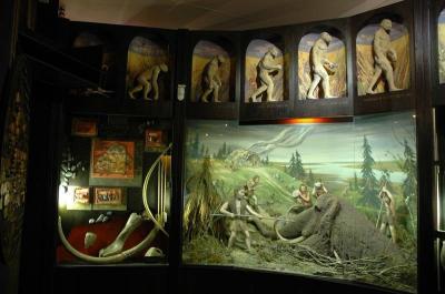 экспозиция городского краеведческого музея